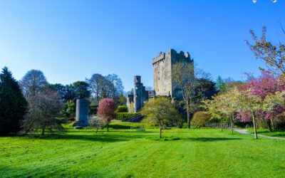 Blarney Castle Ireland Tour