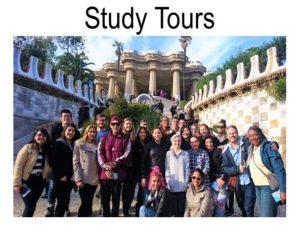 Study Tours | Lingo Tours