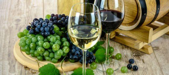 Wine - Barcelona Tour